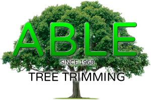 Murrieta Tree Service, Tree trimming Logo